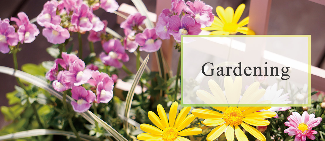 gardening画像